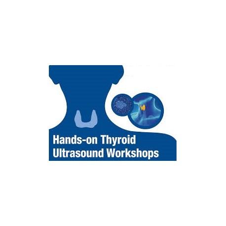 Thyroid ultrasound workshop